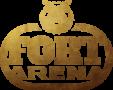 Fort Arena – Ֆորտ Բոյար և Գանձերի Կղզի խաղերը ՀՀ-ում